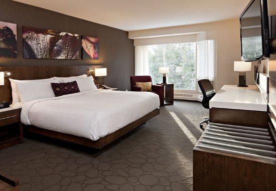 Kananaskis Country, Canada: John Palliser King Guest Room