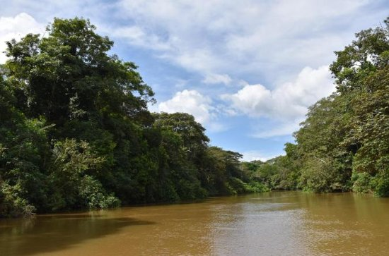 Authentic Experience at the Caño ...