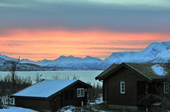 Arctic Wildernes Norway