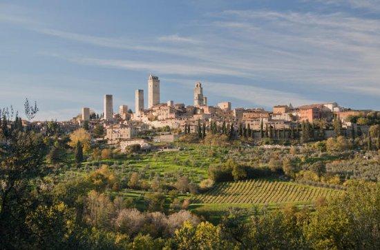 San Gimignano food & wine tour