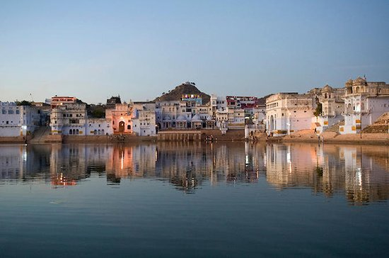 Same Day Full Day Excursion To Pushkar...