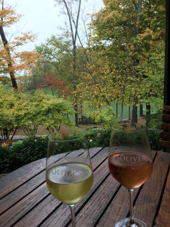 Oliver Winery 이미지