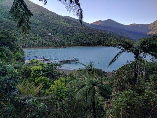 Punga Cove Resort : IMG_20171109_165650_large.jpg