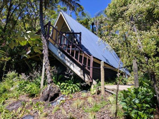Punga Cove Resort : IMG_20171109_115333_large.jpg