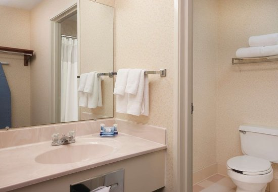 Fairfield Inn Hudson: Guest Bathroom