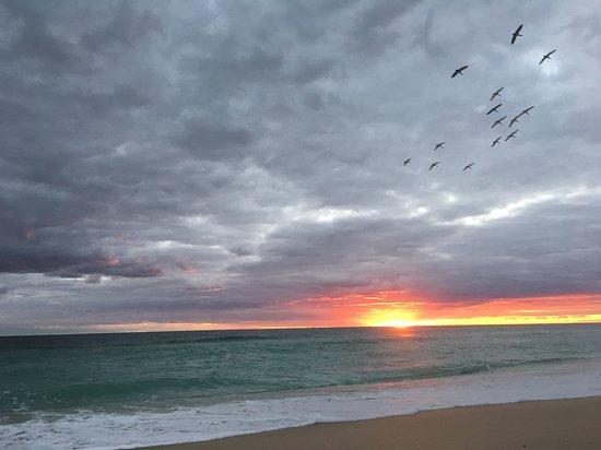 Melbourne Beach Bild