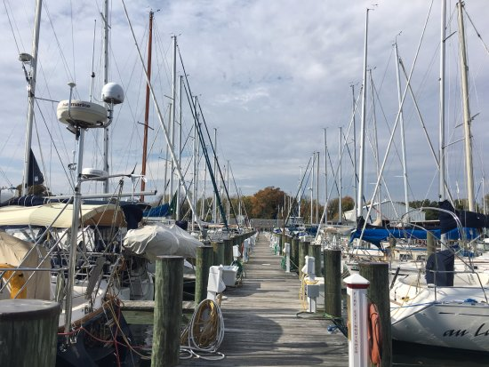 Galesville, MD: On the dock