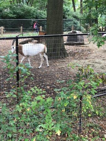 Staten Island Zoo: photo8.jpg
