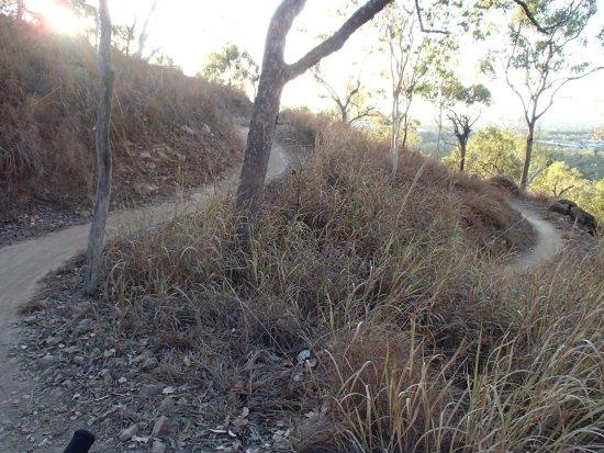 Douglas Mountain Bike Reserve
