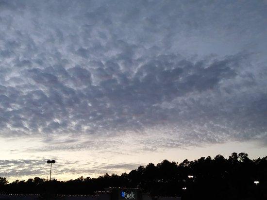 Walterboro, SC: 1105171741a_large.jpg
