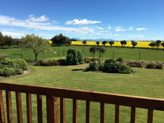 Timaru, New Zealand: Glendeer Lodge grounds and countryside view