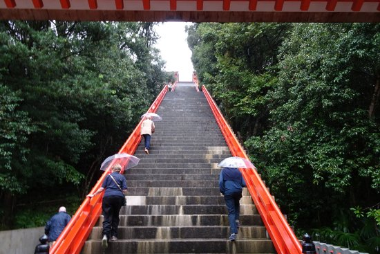 The Stairs To The Front Gate Picture Of Usajingu Shrine Usa