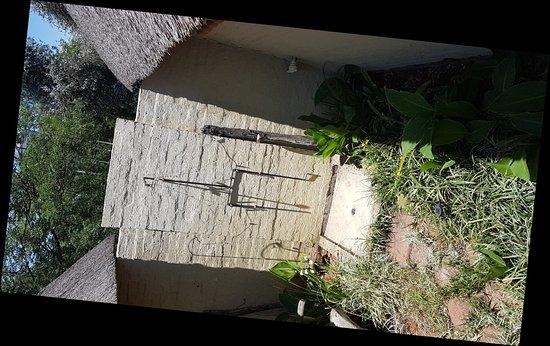 Benoni, Republika Południowej Afryki: 20171110_111808_large.jpg
