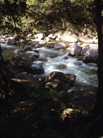 Mossman Gorge: photo1.jpg