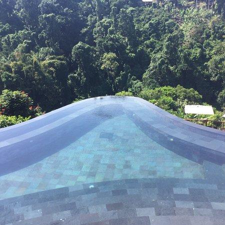 Hanging Gardens of Bali: photo7.jpg