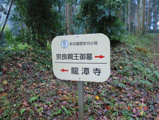 Inoyagu Shrine Photo