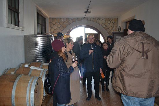 Negrar, Italia: Cellar Guided tour