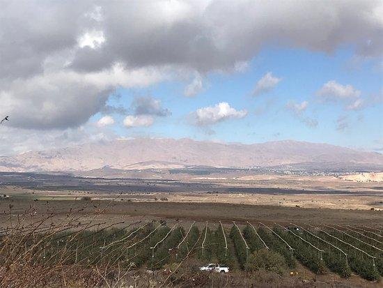 Merom Golan: photo2.jpg