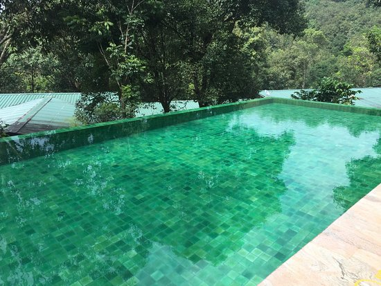 Wayanad Wild Vythiri Kerala Hotel Reviews Photos Rate Comparison Tripadvisor