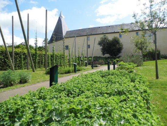 Le musée de la bière de Stenay et son jardin des aromatiques