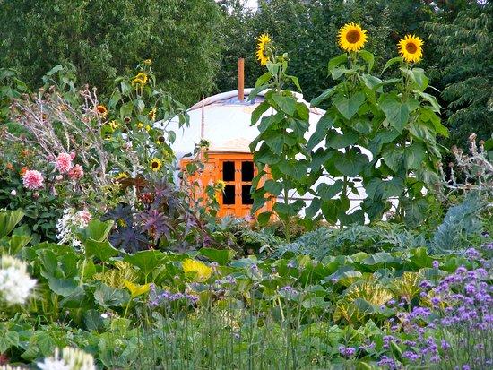 Les Jardins d'Armelle à Stenay