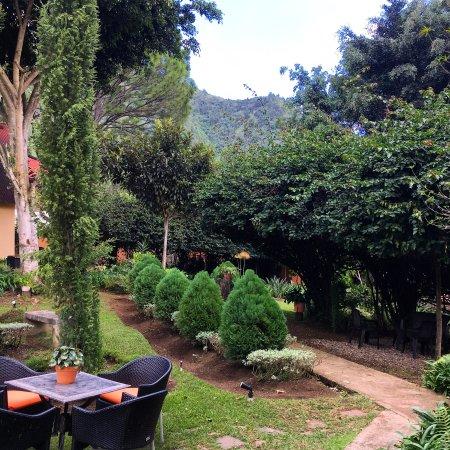 Rancho Constanza: Vista desde Hab 206 y 207
