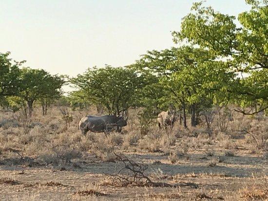 Kamanjab, ناميبيا: photo0.jpg
