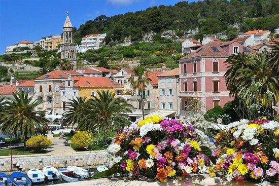 Hvar, Croacia: Son pt port