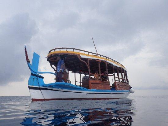 Maafushi Island: photo7.jpg