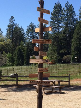 Placerville, Californien: Directional signs to all places wine!