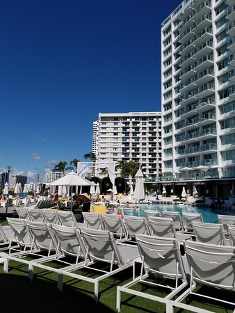 Mondrian Hotel Miami Reviews
