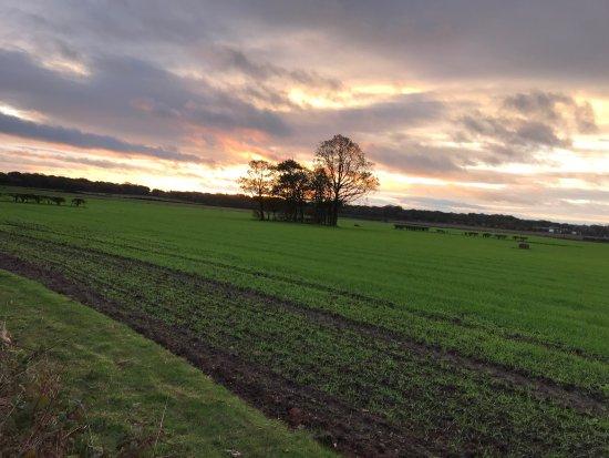 Newton Le Willows, UK: photo0.jpg