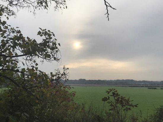 Newton Le Willows, UK: photo3.jpg