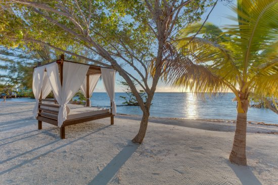 Coco Plum Cay, Belize : Utterly romantic beach beds ...