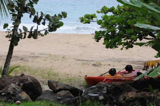 Isla Bastimentos, Panama: Free use of Kayaks