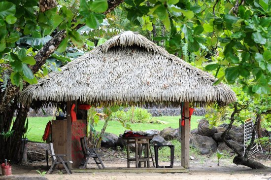 Isla Bastimentos foto