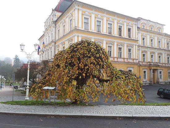Spa Hotel Vltava: 20171105_130222_large.jpg