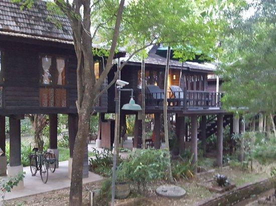 Saraphi, Thailand: 20171109_112634_large.jpg