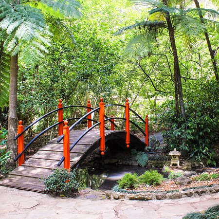 Tamborine Mountain, Australia: photo1.jpg
