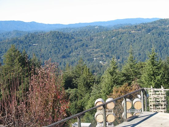 Los Gatos, CA: amazing views, nice place to visit and enjoy the good wine