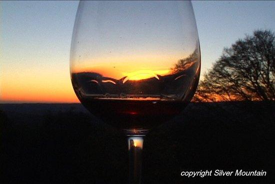 Лос-Гатос, Калифорния: amazing views, nice place to visit and enjoy the good wine