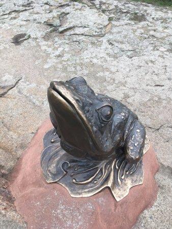 Buki, Ucrânia: Одна из лягушек