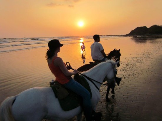 Villa Mango: Horseback riding on Pelada Beach