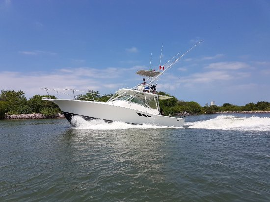 Dave's Fishing Charter & Boat Tours