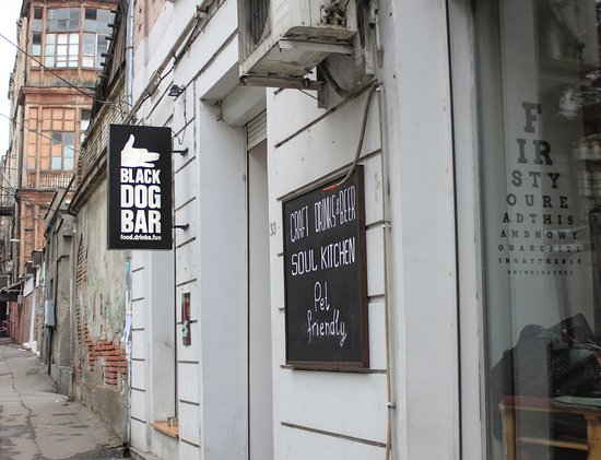 The Black Dog Bar