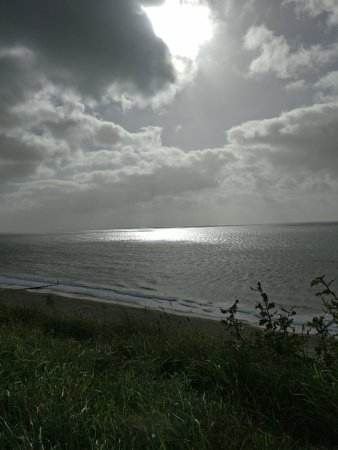 New Forest National Park Hampshire, UK: Southbourne Cliff top - Through the seasons