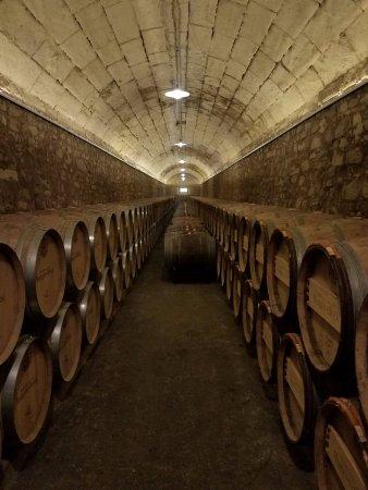 Elciego, Spania: The wine cellars