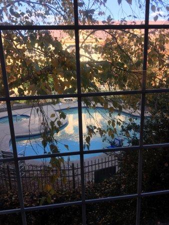 La Quinta Inn & Suites by Wyndham Macon: Nice view in November.