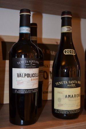 Saporita Food: selezone vini