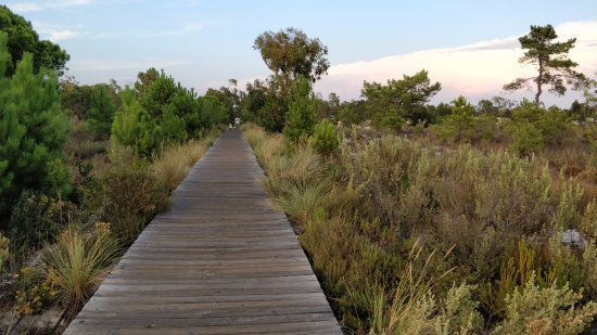Pestana Troia Eco-Resort & Residences: Path to the private beach